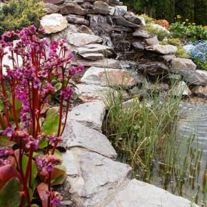 woda-prywatne-ogrody-11